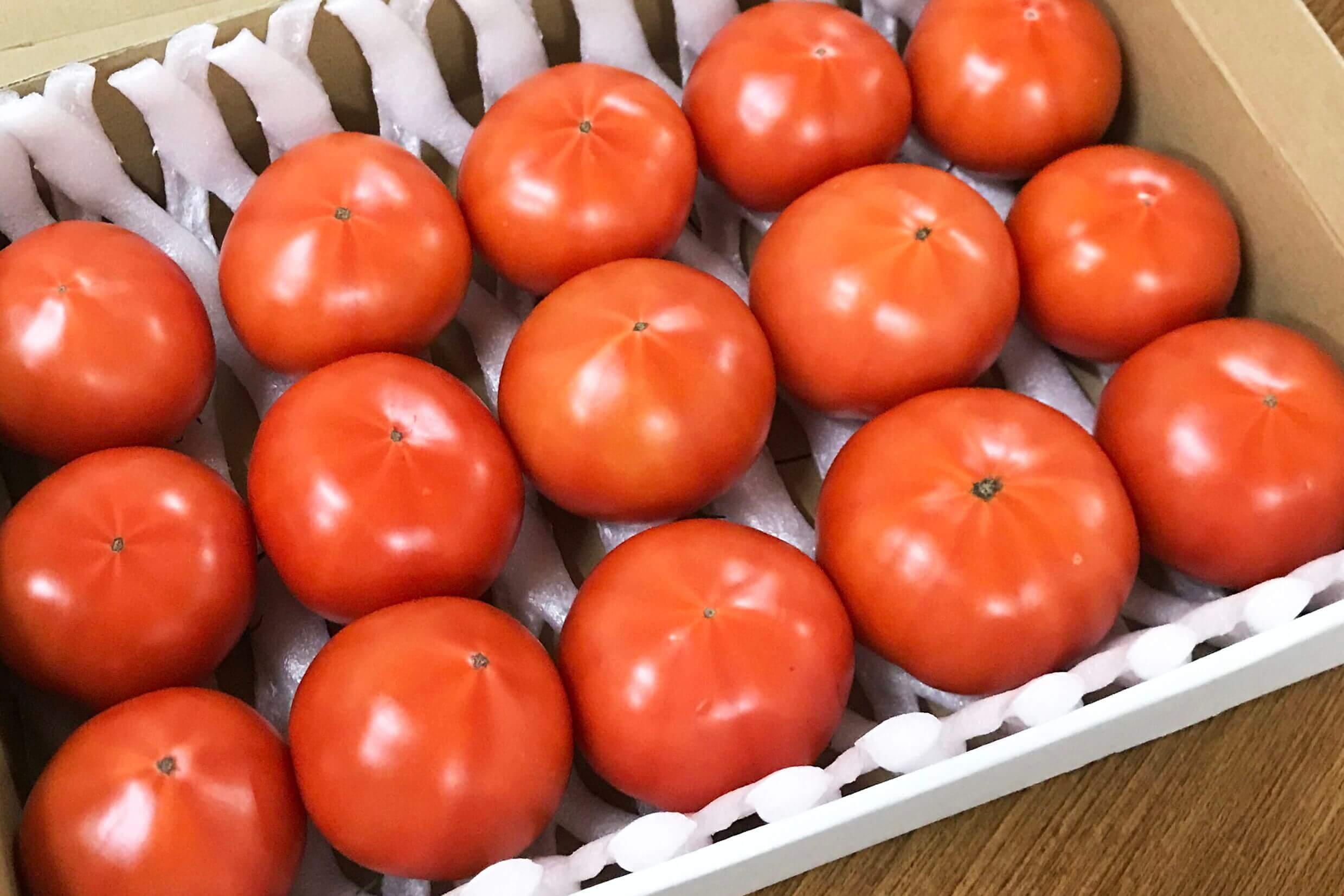 あぐりのたより / 長崎県西海市産 トマト『西海の恵み』 2㎏